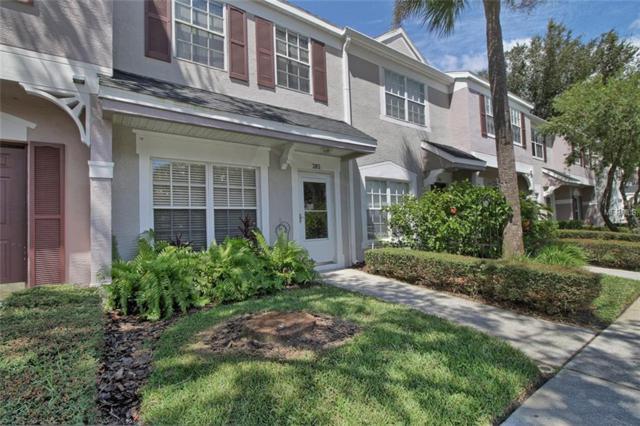 385 Countryside Key Boulevard, Oldsmar, FL 34677 (MLS #U8017727) :: O'Connor Homes