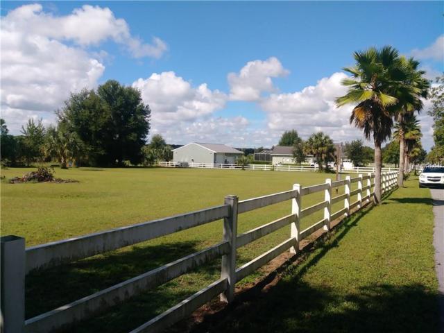 10909 Brigann Yard Way, Thonotosassa, FL 33592 (MLS #U8017734) :: Mark and Joni Coulter | Better Homes and Gardens