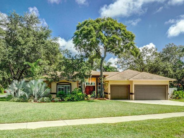 1412 Mallard Place, Palm Harbor, FL 34683 (MLS #U8017821) :: Revolution Real Estate