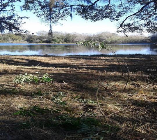 10017 Frierson Lake Drive, Hudson, FL 34669 (MLS #U8017852) :: The Lockhart Team