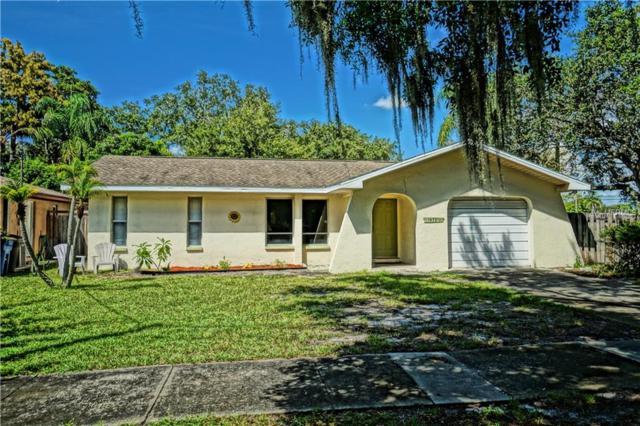 1972 Harding Plaza, Clearwater, FL 33765 (MLS #U8017872) :: Beach Island Group