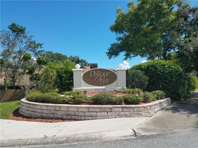 316 Parkside Lane, Safety Harbor, FL 34695 (MLS #U8017892) :: Beach Island Group