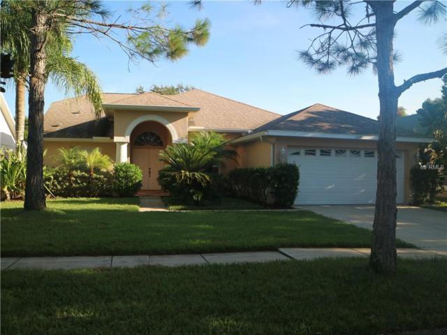 1269 Salt Lake Drive, Tarpon Springs, FL 34689 (MLS #U8017936) :: Beach Island Group