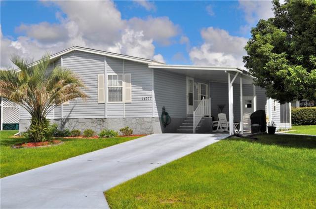 14377 Nectarine Street, Brooksville, FL 34613 (MLS #U8017957) :: The Lockhart Team