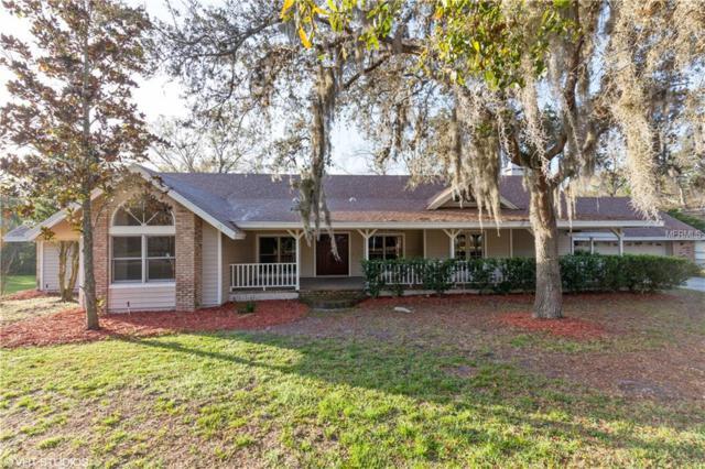 1055 Riverside Ridge Road, Tarpon Springs, FL 34688 (MLS #U8018020) :: Beach Island Group