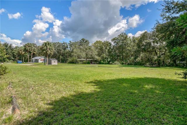8240 Plathe Road, New Port Richey, FL 34653 (MLS #U8018118) :: Griffin Group