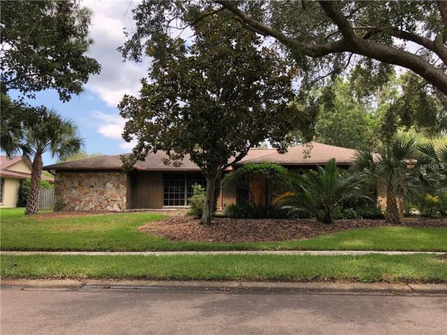 525 Palmdale Drive, Oldsmar, FL 34677 (MLS #U8018127) :: O'Connor Homes