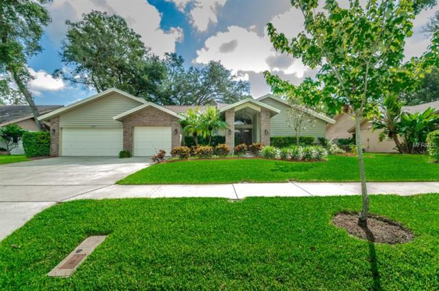 2757 Country Woods Lane, Palm Harbor, FL 34683 (MLS #U8018170) :: Burwell Real Estate