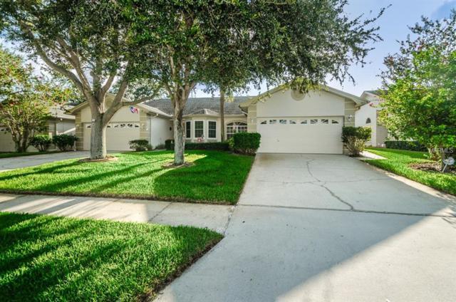 3051 Brookfield Lane, Clearwater, FL 33761 (MLS #U8018173) :: Lock and Key Team
