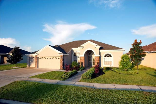 19838 Preservation Woods Drive NW, Lutz, FL 33558 (MLS #U8018280) :: Griffin Group