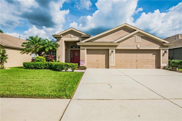 3236 Brenford Place, Land O Lakes, FL 34638 (MLS #U8018305) :: Lock and Key Team