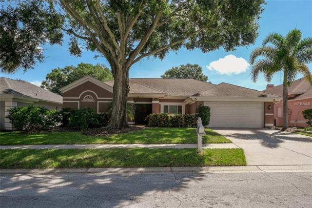 3085 Regal Oaks Boulevard, Palm Harbor, FL 34684 (MLS #U8018324) :: Lock and Key Team