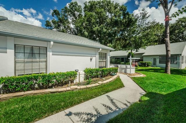 3870 Pheasant Court, Palm Harbor, FL 34685 (MLS #U8018338) :: Lock and Key Team