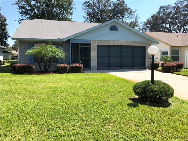 11626 Cocowood Drive, New Port Richey, FL 34654 (MLS #U8018365) :: The Duncan Duo Team