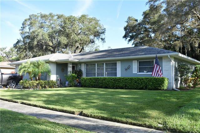179 Sunshine Drive, Palm Harbor, FL 34684 (MLS #U8018406) :: Lock and Key Team