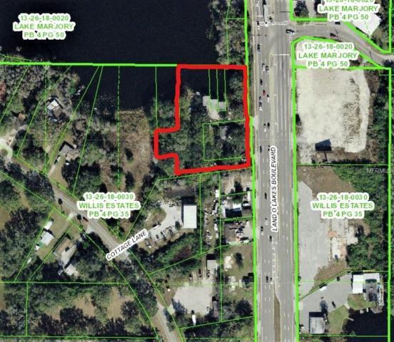 4705 Land O Lakes Boulevard, Land O Lakes, FL 34639 (MLS #U8018420) :: RE/MAX Realtec Group