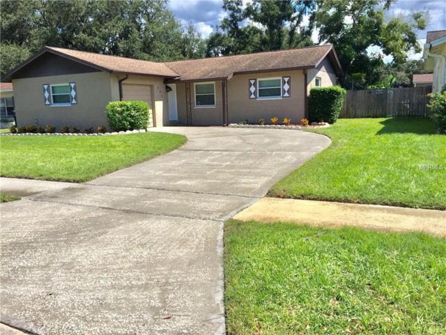 507 Oakside Drive, Brandon, FL 33510 (MLS #U8018425) :: Delgado Home Team at Keller Williams