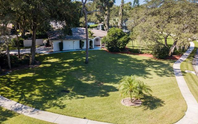 3031 Harvest Moon Drive, Palm Harbor, FL 34683 (MLS #U8018432) :: Delgado Home Team at Keller Williams