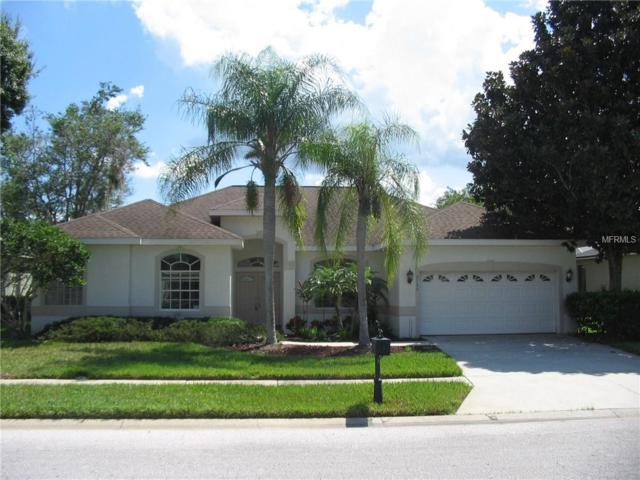 5155 Kernwood Court, Palm Harbor, FL 34685 (MLS #U8018434) :: Delgado Home Team at Keller Williams