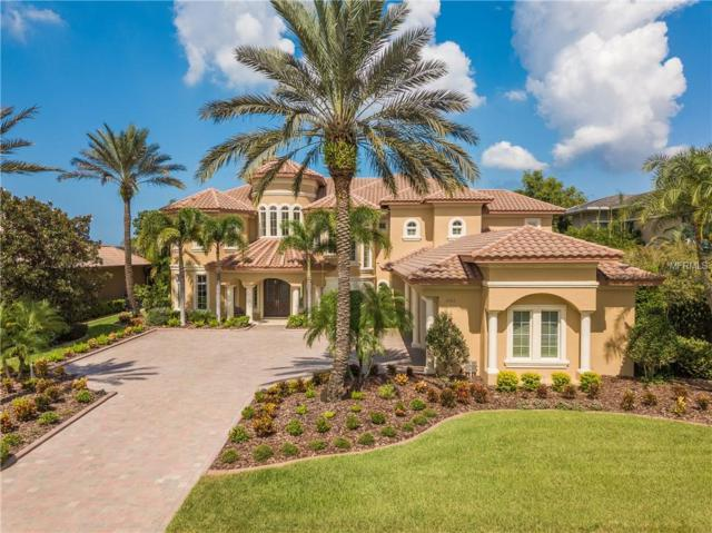 3763 Mullenhurst Drive, Palm Harbor, FL 34685 (MLS #U8018457) :: Delgado Home Team at Keller Williams