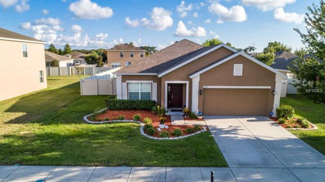 2330 Swordfish Avenue, Holiday, FL 34691 (MLS #U8018489) :: The Duncan Duo Team