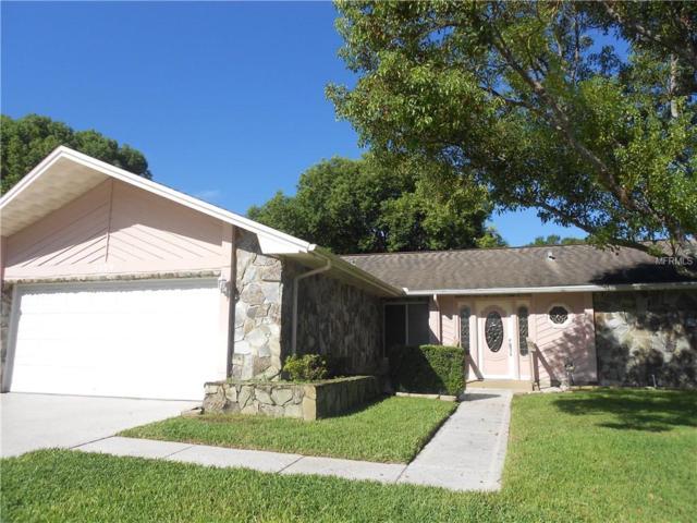 3120 Brunswick Circle, Palm Harbor, FL 34684 (MLS #U8018539) :: Jeff Borham & Associates at Keller Williams Realty