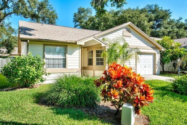 1463 Brier Court, Palm Harbor, FL 34683 (MLS #U8018548) :: Delgado Home Team at Keller Williams