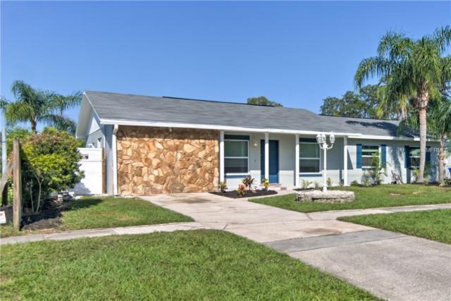 3515 S Kings Avenue, Brandon, FL 33511 (MLS #U8018583) :: Delgado Home Team at Keller Williams