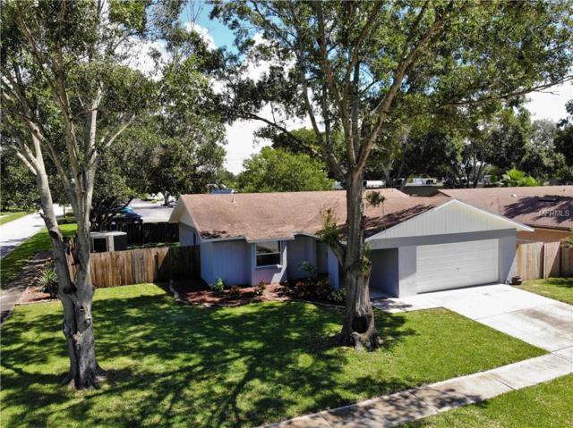 1343 Homestead Drive, Palm Harbor, FL 34683 (MLS #U8018601) :: Cartwright Realty