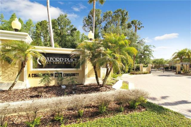5125 Palm Springs Boulevard #14202, Tampa, FL 33647 (MLS #U8018632) :: The Duncan Duo Team