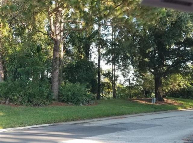12405 Eagles Entry Drive, Odessa, FL 33556 (MLS #U8018659) :: Griffin Group