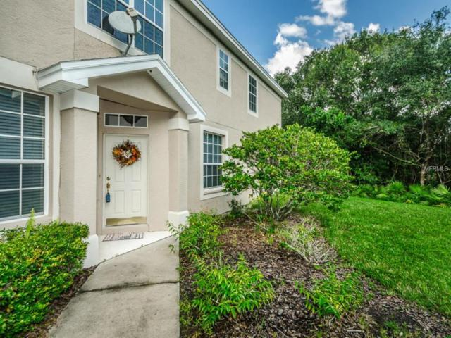 6221 Duck Key Court, Tampa, FL 33625 (MLS #U8018716) :: The Duncan Duo Team