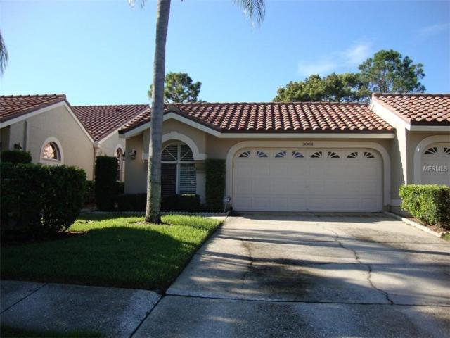 3884 Darston Street, Palm Harbor, FL 34685 (MLS #U8018734) :: Jeff Borham & Associates at Keller Williams Realty