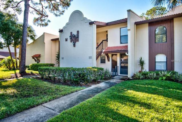 3505 Tarpon Woods Boulevard M409, Palm Harbor, FL 34685 (MLS #U8018793) :: Zarghami Group
