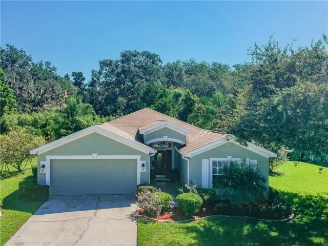 1224 Wyndham Lakes Drive, Odessa, FL 33556 (MLS #U8018880) :: Griffin Group