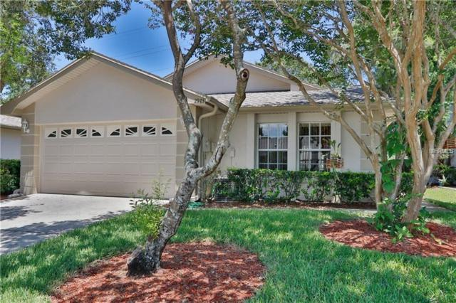 2973 Brookfield Lane, Clearwater, FL 33761 (MLS #U8019047) :: Cartwright Realty