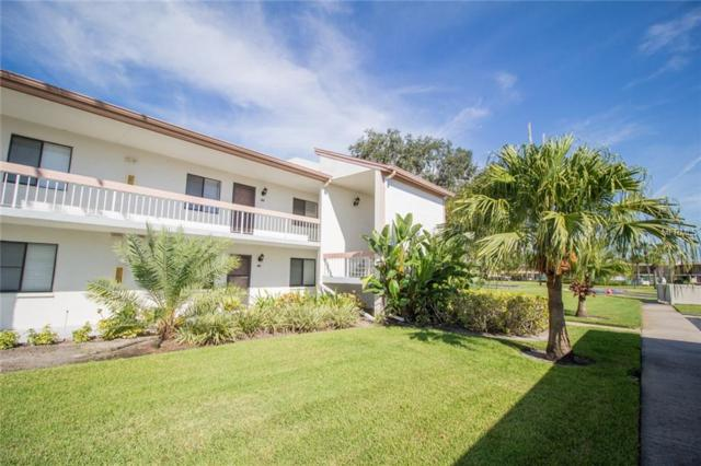 104 Lakeview Way, Oldsmar, FL 34677 (MLS #U8019085) :: The Duncan Duo Team