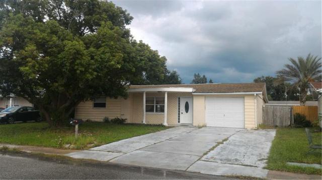 3344 Brookfield Drive, Holiday, FL 34691 (MLS #U8019120) :: The Light Team