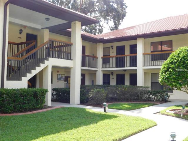 202 Hammock Pine Boulevard #202, Clearwater, FL 33761 (MLS #U8019722) :: The Duncan Duo Team