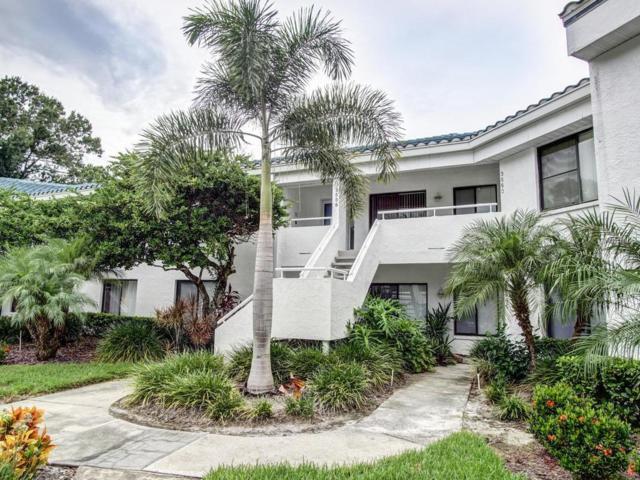 3558 Indigo Pond Drive #3558, Palm Harbor, FL 34685 (MLS #U8019740) :: Revolution Real Estate