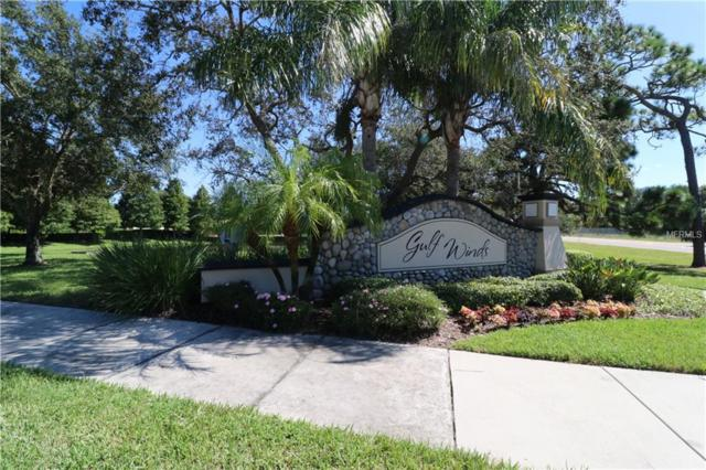 2153 Parrot Fish Drive, Holiday, FL 34691 (MLS #U8020277) :: The Duncan Duo Team