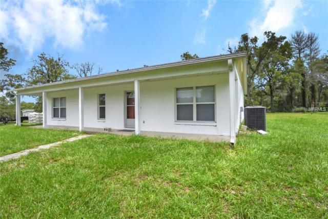 4253 W Picnic Lane, Homosassa, FL 34446 (MLS #U8020372) :: The Duncan Duo Team