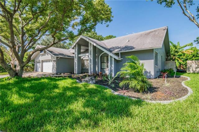 1545 Virginia Avenue, Palm Harbor, FL 34683 (MLS #U8020412) :: Jeff Borham & Associates at Keller Williams Realty