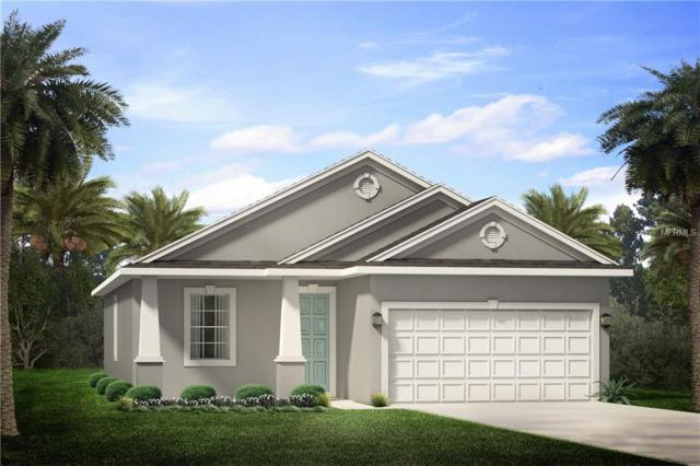 1352 Admiral Woodson Lane, Clearwater, FL 33755 (MLS #U8020474) :: The Lockhart Team