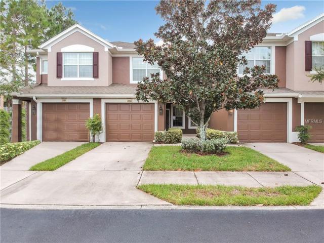 2052 Santa Catalina Lane #2052, Riverview, FL 33578 (MLS #U8020516) :: Team Bohannon Keller Williams, Tampa Properties