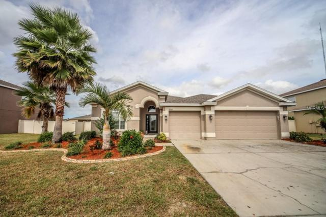 2337 Swordfish Avenue, Holiday, FL 34691 (MLS #U8020598) :: The Duncan Duo Team