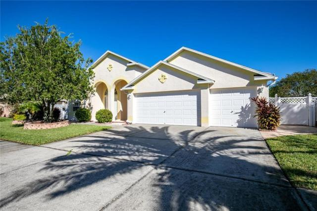 12303 Portrush Court, Odessa, FL 33556 (MLS #U8020725) :: Team Bohannon Keller Williams, Tampa Properties