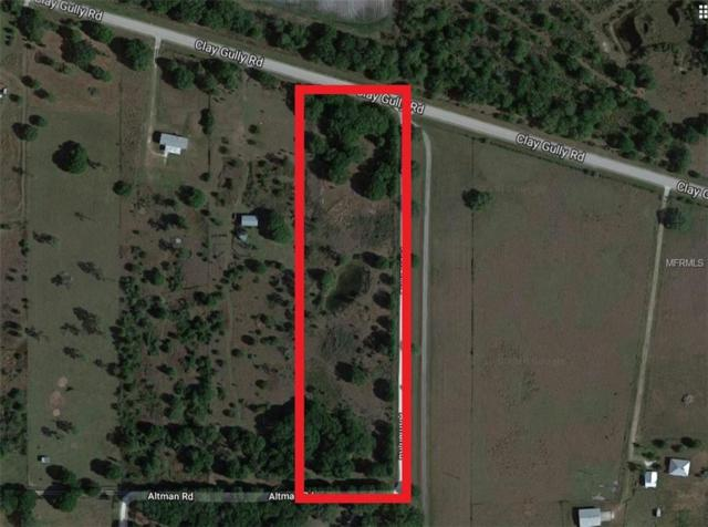 42630 Clay Gully Road, Myakka City, FL 34251 (MLS #U8021009) :: Mark and Joni Coulter | Better Homes and Gardens
