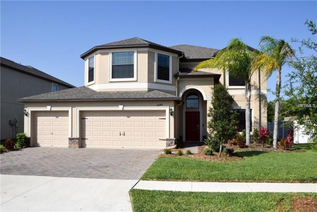 12149 Crestridge Loop, Trinity, FL 34655 (MLS #U8021096) :: RE/MAX CHAMPIONS