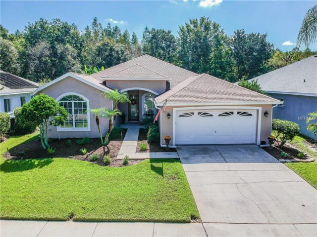18939 Maisons Drive, Lutz, FL 33558 (MLS #U8021205) :: Team Bohannon Keller Williams, Tampa Properties